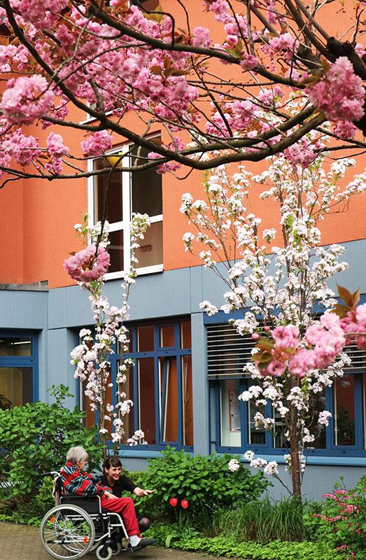 Altenzentrum St. Marien Frühling - blühende Bäume